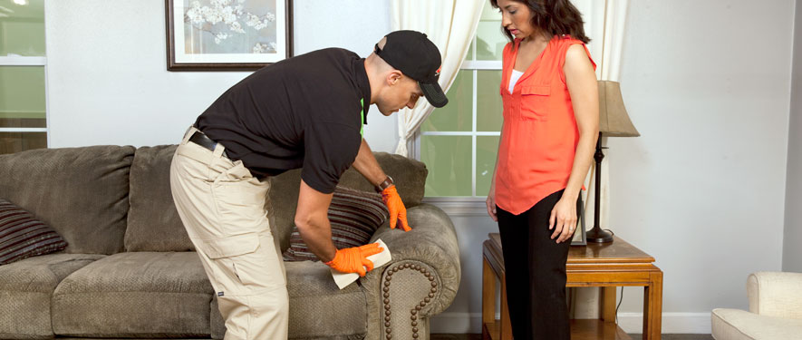 Sylacauga, AL carpet upholstery cleaning